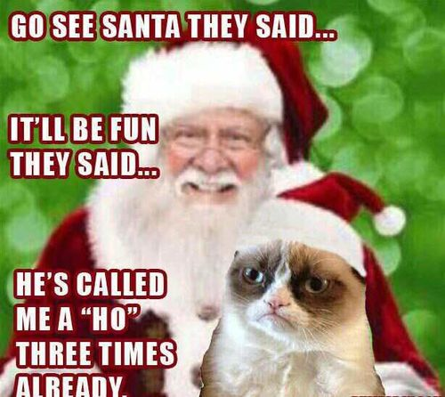 Grumpy Cat with Santa